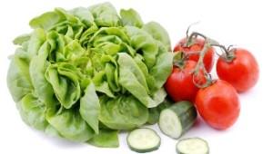 Salat wp