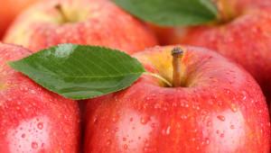 Gesunde Ernährung rote Äpfel Früchte mit Blatt