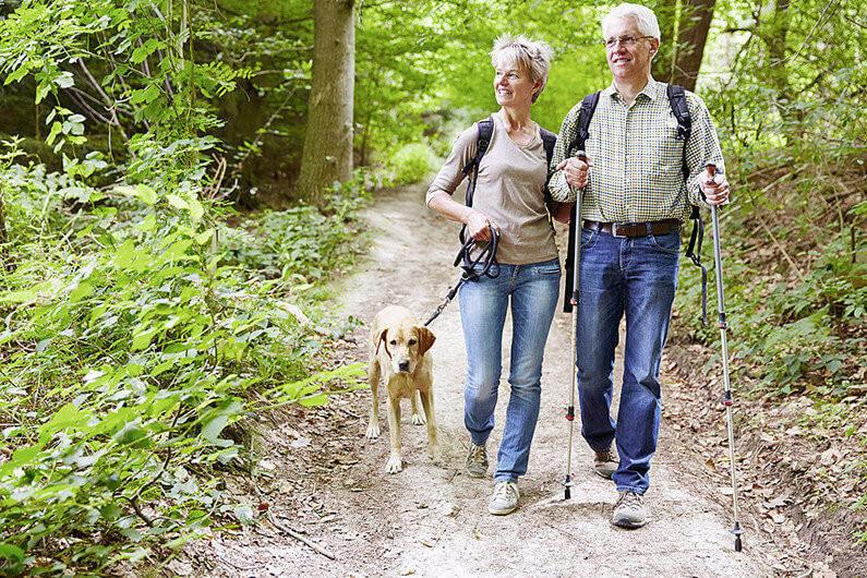 Paar Senioren beim Wandern mit Hund im Wald im Sommer