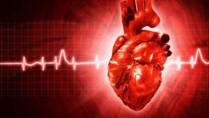 ECG abstract backgrounds with human 3D rendered heart