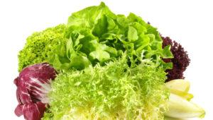 Salatmix