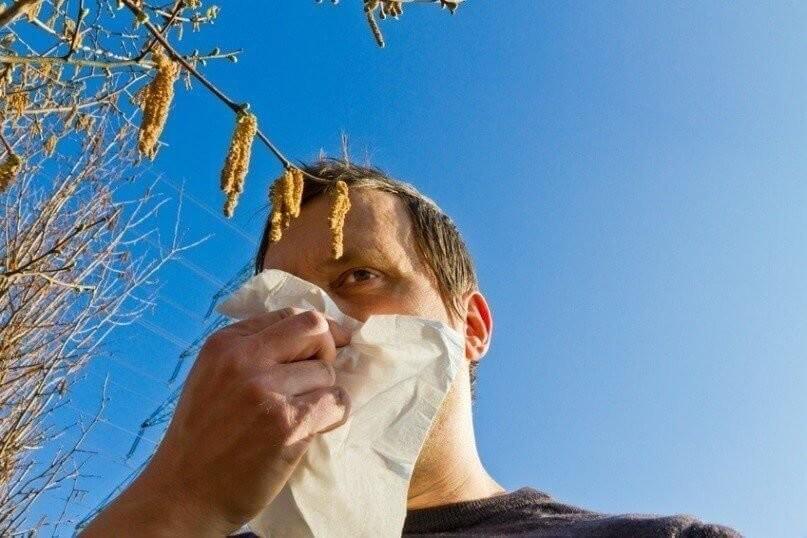Nasen Pollen