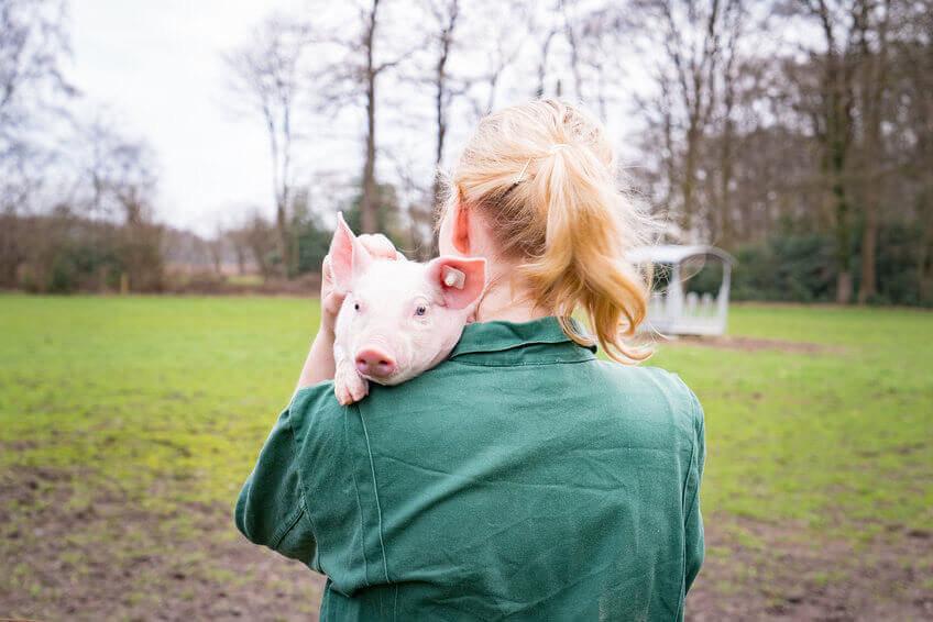 Agrarwerbung - Teenager in Stallkleidung mit Ferkel auf der Schulter