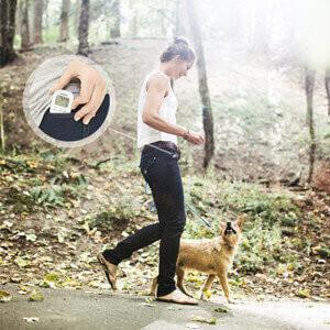 WS_IV Stimmungsbild Frau mit Hund im Wald