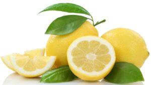 Zitrone Zitronen Früchte Freisteller freigestellt isoliert