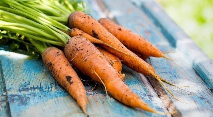 carrots on a vintage wooden background