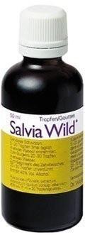 Salvia Wild