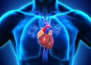 Herz und Diabetes 12.18