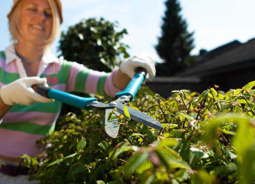 mit Gartenarbeit abnehmen