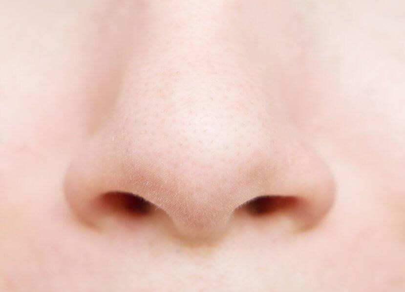 Eine Wohltat für alle Nasen - Sprechstunde Doktor Stutz