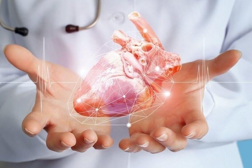 Herz Tri Clip