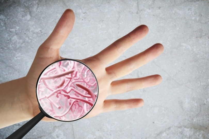 Infektion Hände Waschen Bild AdobeStock Urheber peshkova