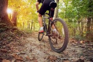 Mountainbike Bild AdobeStock Urheber luckybusiness