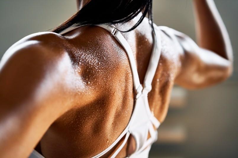 Muskel cut AdobeStock 327490111